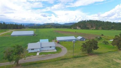 Single Family Home For Sale: 1922 A Swiss Valley Rd