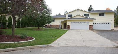 Spokane Valley Single Family Home For Sale: 4110 S Hollow Ct