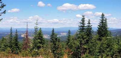 spokane Residential Lots & Land New: Xx Webster Rd #Parcel 1
