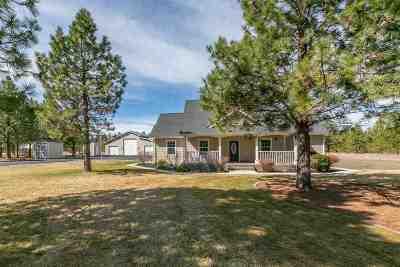 Spokane Single Family Home For Sale: 2415 N Blue Raven Ln