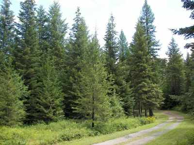 """Addy Residential Lots & Land For Sale: Blue Creek Rd """"d"""" Rd"""