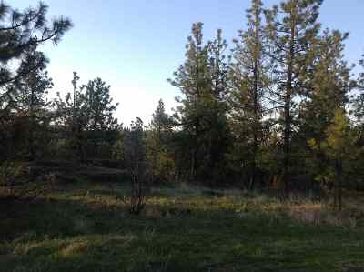 Spokane Residential Lots & Land For Sale: 38xx W Grandview Ave