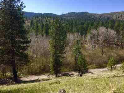 Spokane Valley Residential Lots & Land Ctg-Other: S Ponderosa Dr