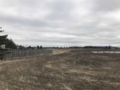 Residential Lots & Land For Sale: 5703 S Thomas Mallen Rd
