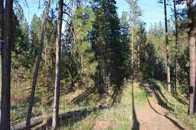 Residential Lots & Land For Sale: 5438b S Swenson Rd