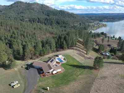 Nine Mile Falls WA Single Family Home For Sale: $597,000