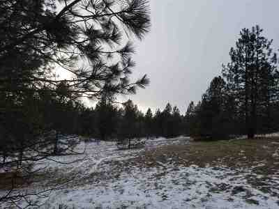 Mead Residential Lots & Land For Sale: 131xx N Chronicle Rd