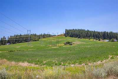 Spokane Residential Lots & Land For Sale: Xx N Bruce Rd