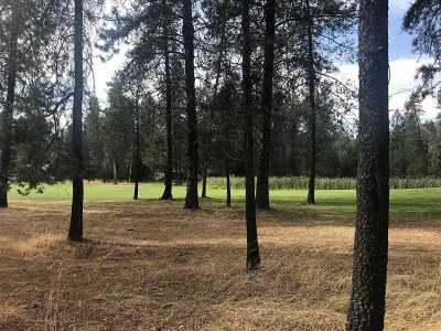 Chewelah Residential Lots & Land For Sale: 202 Eagle Dr #Lot 1