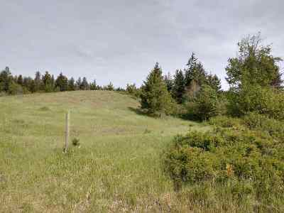 Residential Lots & Land For Sale: 2141 Horseshoe Lake Rd