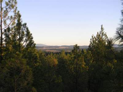 Spokane Residential Lots & Land For Sale: 1106 W Austin Rd