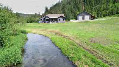 Newport Single Family Home For Sale: 822 Little Spokane River Rd