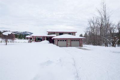 Kootenai County, Spokane County Single Family Home For Sale: 24350 N Rimrock Rd