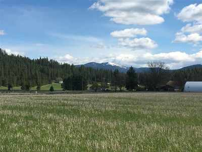 Colbert Residential Lots & Land Ctg-Inspection: 8700 E Big Meadows Rd #Parcel A