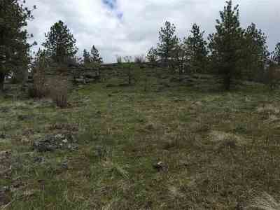 Spokane Residential Lots & Land For Sale: Tbd W Garden Springs Rd