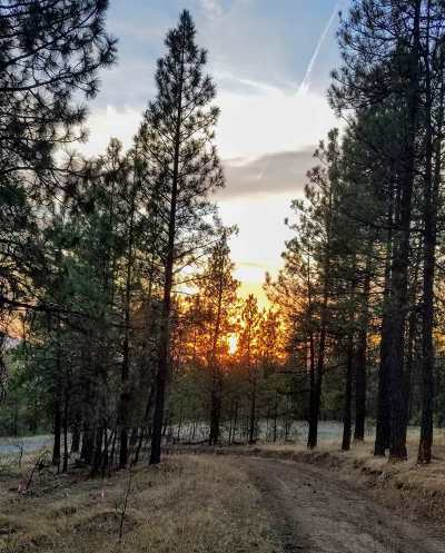 Residential Lots & Land New: 13853 S Serenity Ln