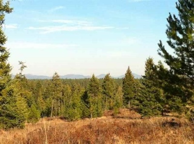 Residential Lots & Land New: Lot#35 North Park Ln