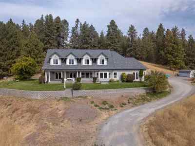 Spokane Single Family Home For Sale: 4015 E Jamieson Rd