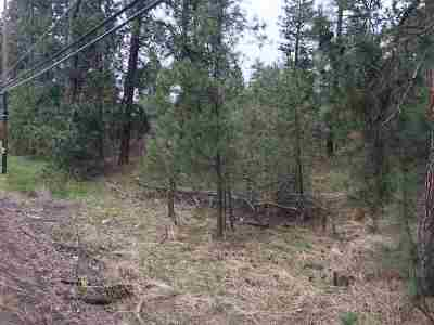 Spokane Residential Lots & Land For Sale: 261x S Assembly Rd