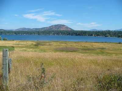 Valley Residential Lots & Land For Sale: 3381 S Waitts Lake Rd
