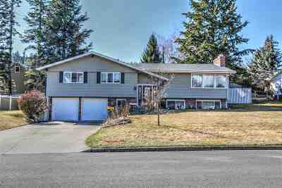 spokane Single Family Home Ctg-Inspection: 9817 N Excell Dr