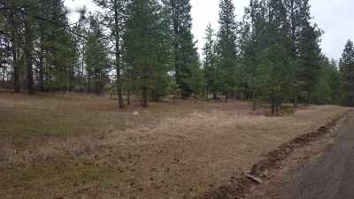 Nine Mile Falls Residential Lots & Land For Sale: Nna Stony (#9713) Way