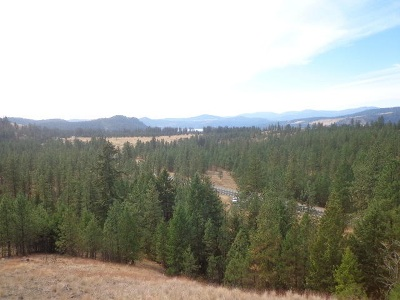 Hunters Residential Lots & Land For Sale: 5165 Tbd S 25 Hwy