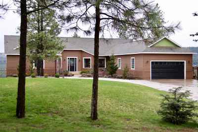 Nine Mile Falls WA Single Family Home For Sale: $799,900