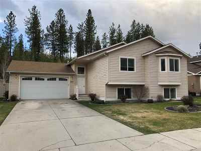 Nine Mile Falls WA Single Family Home Ctg-Inspection: $338,900