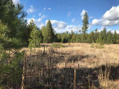 Springdale Residential Lots & Land New: Lot 7 Woods Way