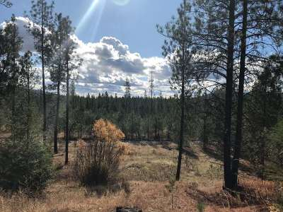 Springdale Residential Lots & Land New: Lot 10 Woods Way