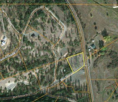 Davenport Residential Lots & Land For Sale: 31825 E Blue Grouse Dr