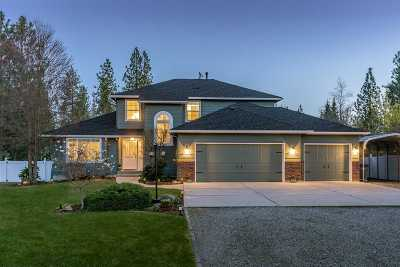 Nine Mile Falls WA Single Family Home New: $439,900