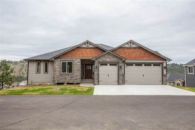 Spokane Single Family Home For Sale: 5102 S Lincoln Way