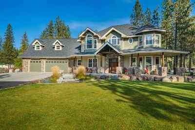 Nine Mile Falls WA Single Family Home New: $799,000