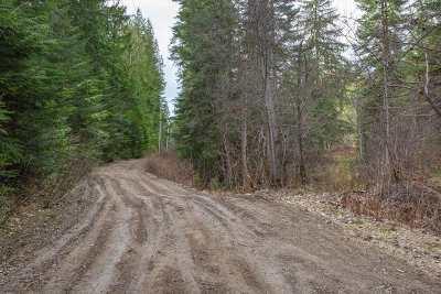 Mead Residential Lots & Land For Sale: Mt Spokane Park Dr
