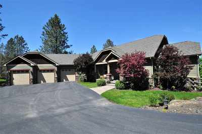 Spokane Single Family Home For Sale: 1103 E Silver Fox Ln