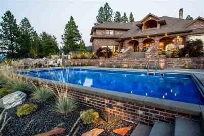 Spokane County Single Family Home For Sale: 10710 S Mica Vista Ln