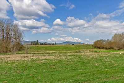 Residential Lots & Land For Sale: N Hwy 395 Hwy