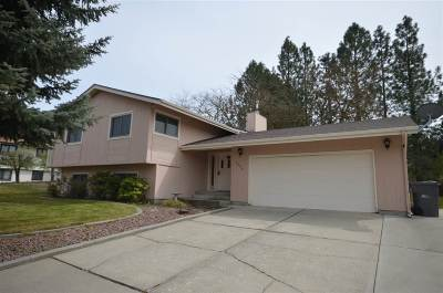 Spokane Single Family Home For Sale: 23318 E Valleyway Ave