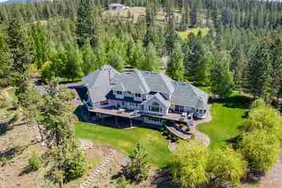 Spokane County Single Family Home For Sale: 20640 W South Bank Rd