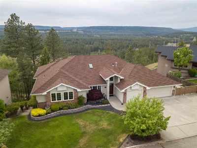 spokane Single Family Home Ctg-Inspection: 10001 N Comanche Dr