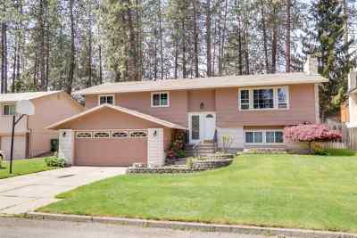 Spokane Single Family Home New: 8615 N Pamela St