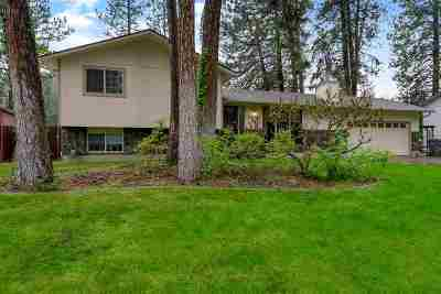Spokane Single Family Home New: 1220 S Mica Park Dr