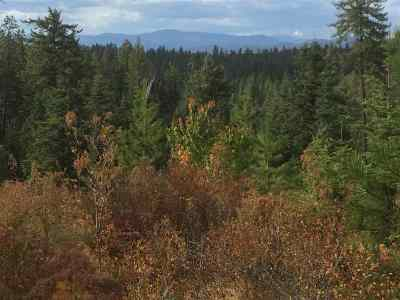 Chattaroy Residential Lots & Land For Sale: 115xx E Antler Rd