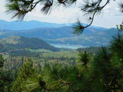 Hunters Residential Lots & Land For Sale: Tbd Wolf Way