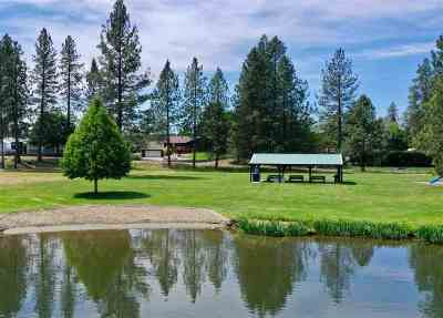 Nine Mile Falls WA Single Family Home Ctg-Sale Buyers Hm: $415,000