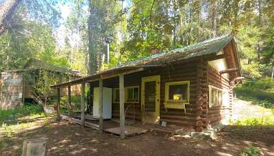Single Family Home For Sale: 1107 Aladdin Rd