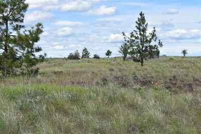 Nine Mile Falls Residential Lots & Land For Sale: Xxx Tbd