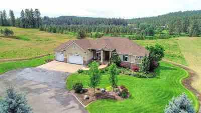 Spokane Single Family Home For Sale: 7524 S Hangman Valley Rd
